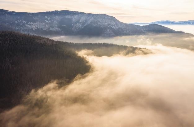 Scenario paesaggistico nella nebbia mattutina illuminata dalla luce solare.