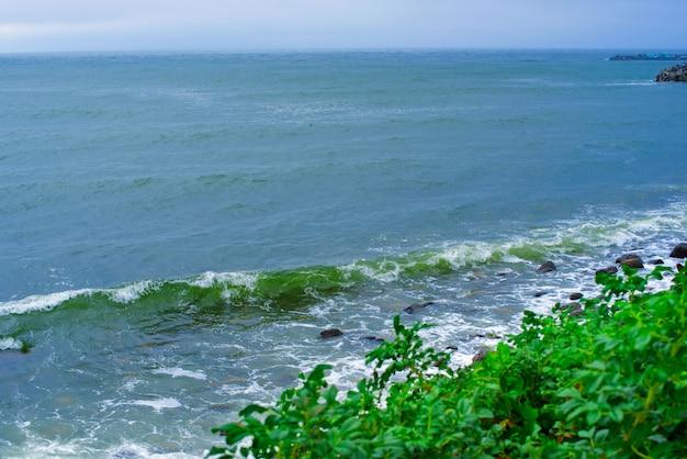 La spiaggia rocciosa del mare della riva del mare della natura del paesaggio ondeggia i cespugli la rosa canina paesaggio marino naturale