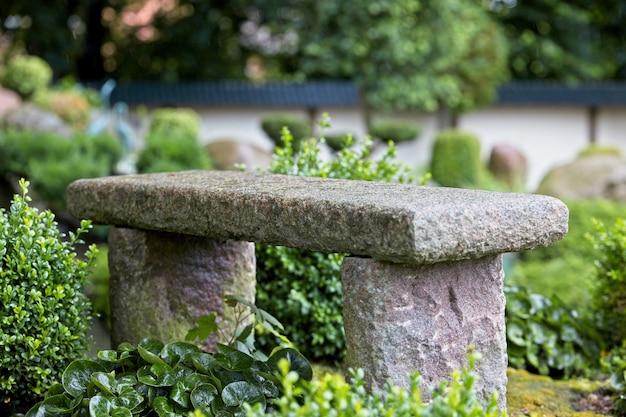 Colpo di paesaggio di una panchina di pietra in un giardino tropicale in una giornata di primavera