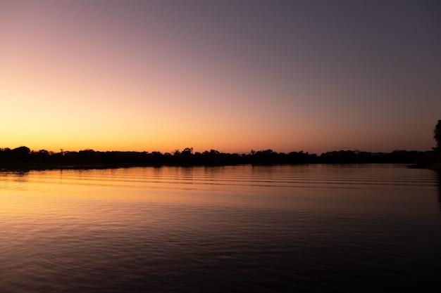 Vista dell'alba del paesaggio nel pantanal, brasile. messa a fuoco selettiva