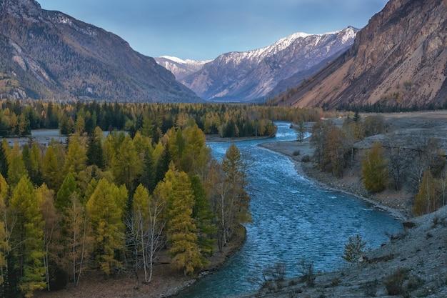 Il paesaggio con il grande fiume siberiano katun, nei monti altai, in autunno, siberia, repubblica di montagna altai, russia.