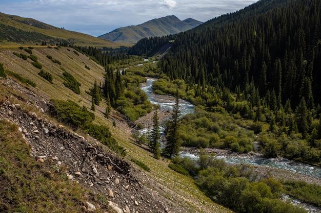 Paesaggio con un fiume di montagna