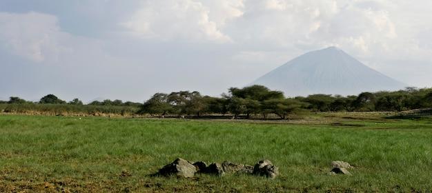 Abbellisca con il vulcano di ol doinyo lengai, tanzania, africa
