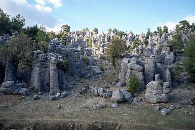 Paesaggio con pittoresche formazioni rocciose. formazioni rocciose e alberi verdi sotto il cielo blu.