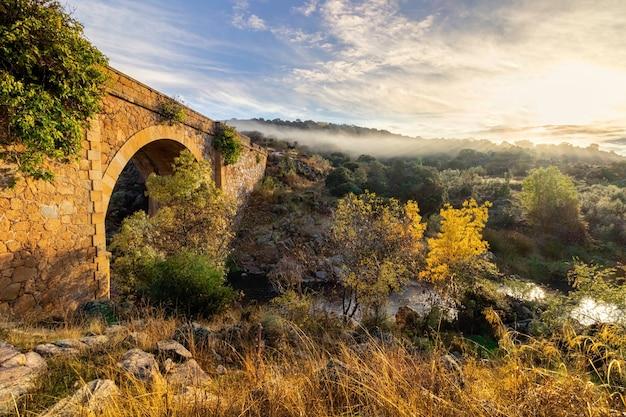 Paesaggio con ponte in pietra sul torrente con piante verdi e gialle. cielo drammatico con nuvole. toledo, spagna, europa,