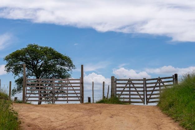 Paesaggio con due cancelli in legno, albero e cielo blu