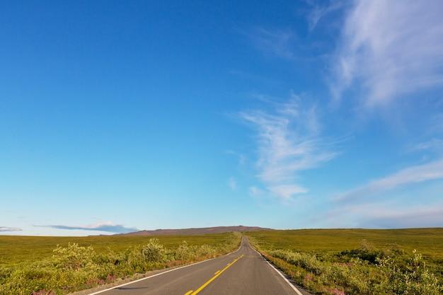 Paesaggi sull'autostrada denali, alaska.