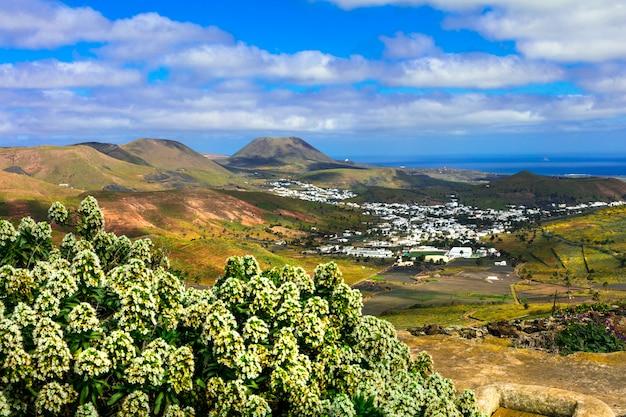 Lanzarote, impressionante bellezza dell'isola vulcanica. vista del villaggio di haria