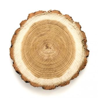Grande pezzo circolare in legno con sezione trasversale con motivo ad anelli e fessure