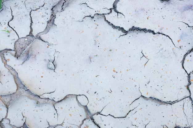 Grandi crepe nel terreno vicino a specchi d'acqua asciutti nella stagione secca.