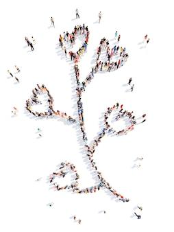 Grande gruppo di persone sotto forma di una foglia di un fiore sfondo bianco isolato