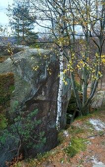 Grande pietra alta nella foresta autunnale (