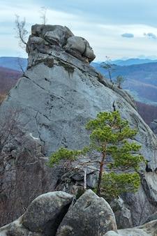 Grandi pietre alte nella foresta autunnale (