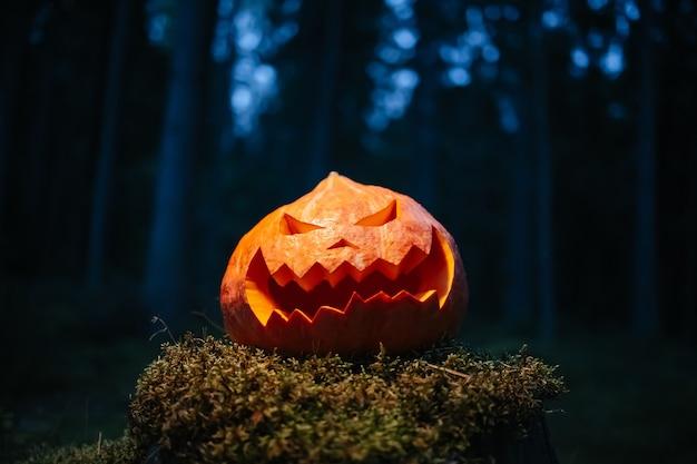 Grande zucca con faccia scolpita nella foresta oscura su ceppo con concetto di muschio vacanza di halloween