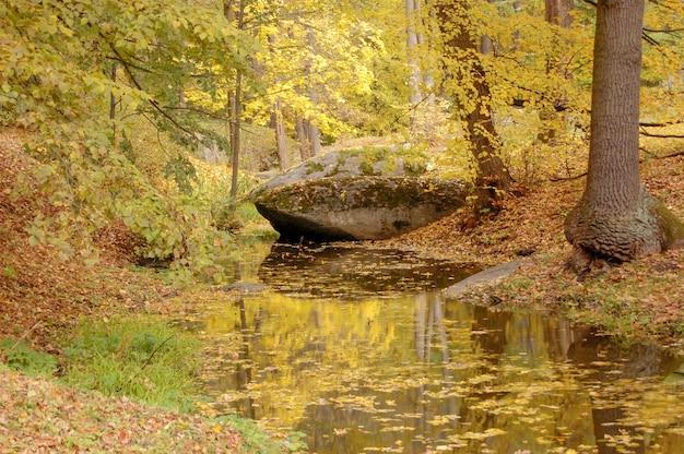 Grande pietra che giace vicino a un torrente in autunno nel parco, cosparsa di foglie gialle