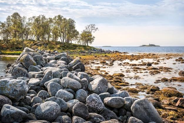 Grandi pietre e massi nelle gabbie filippovsky sulle isole solovetsky tra alghe e acque blu del mar bianco