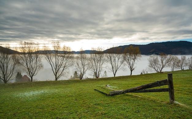 Una grande pila bagnata si trova su un campo verde in mezzo a una fitta nebbia grigia in caso di pioggia