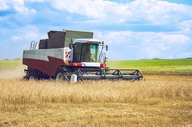 Fine estate inizio autunno raccolta di colture agricole utilizzando una moderna mietitrebbia