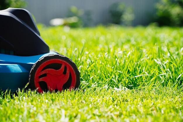 Macchina elettrica del tosaerba che taglia il taglio del prato verde dell'erba