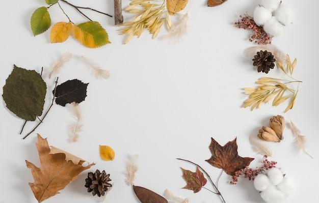 Disposizione dei materiali asciutti autunnali di diversi alberi su uno sfondo bianco. copia spazio, piatto laico, concetto di telaio autunnale