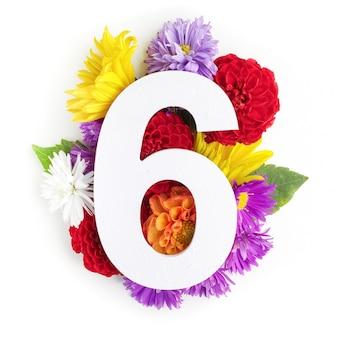 Layout con fiori colorati, foglie e numero sei. disposizione piatta. vista dall'alto.