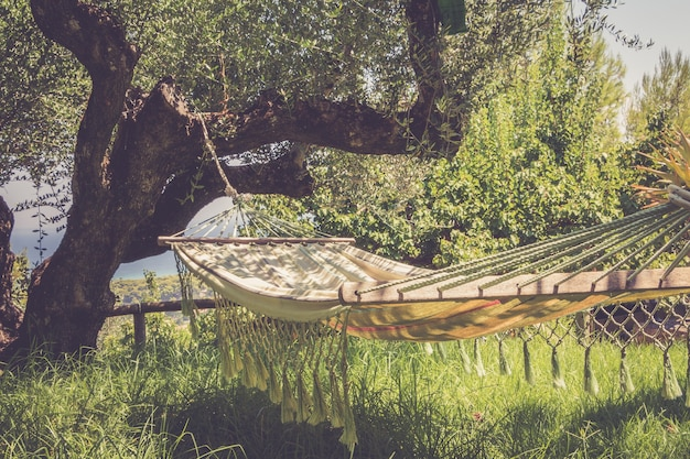 Tempo pigro con amaca nel giardino estivo