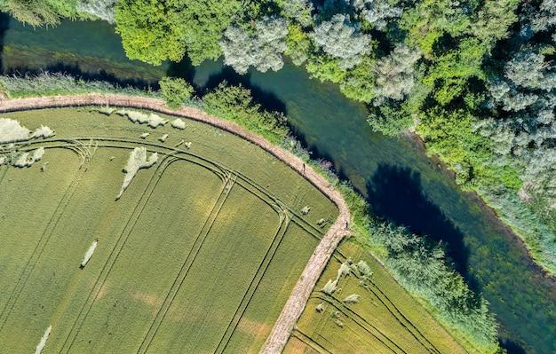 Le rhin tortu, un piccolo fiume a sud di strasburgo - grand est, francia