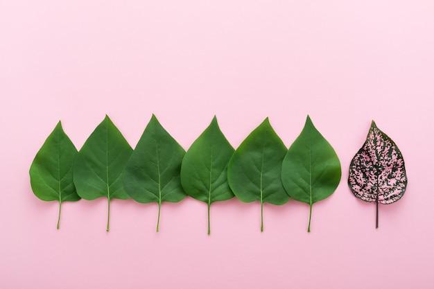 Concetto di leader e squadra con foglie