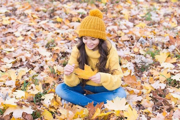 Gioco delle foglie. bambino piccolo con foglia d'autunno seduto a terra. bambino felice sul paesaggio autunnale. piccolo gioco da bambini all'aria aperta. esperienza del bambino nella natura autunnale.