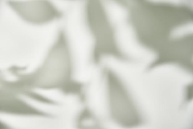 Ombra di foglia su bianco.
