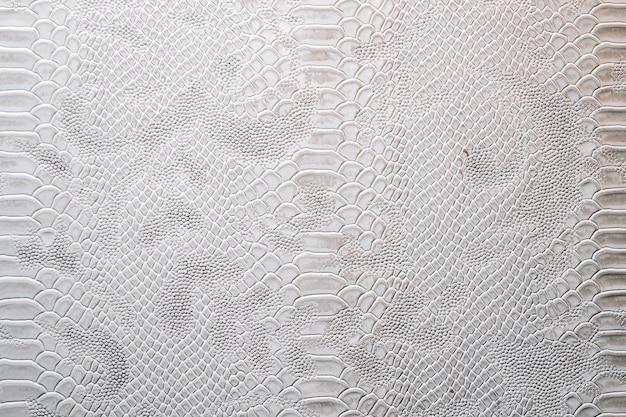 Pelle con trama vestita di coccodrillo. sfondo di pelle di drago nei colori argento.