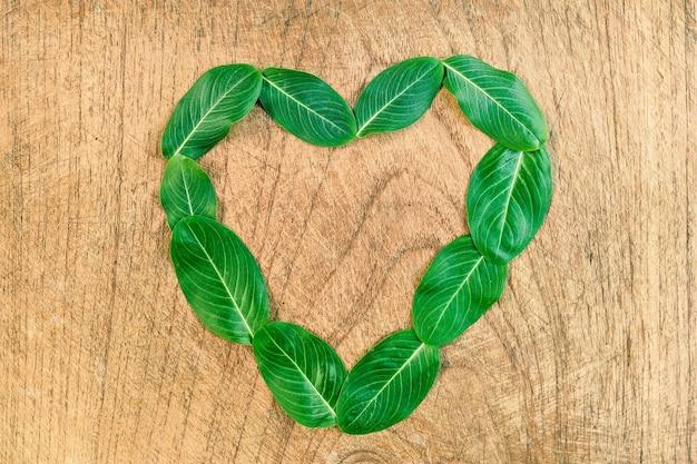 Le foglie formano il cuore sul vecchio legno
