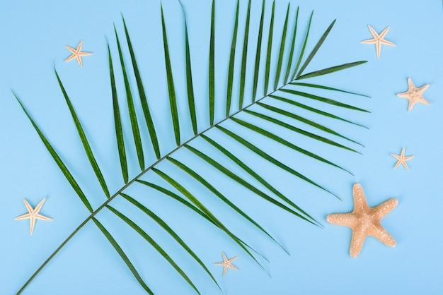 Foglie di una pianta verde su uno sfondo colorato con un posto per il testo. sfondo estivo