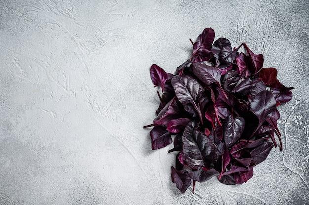 Foglie di bietola rossa svizzera o insalata di mangold. tavolo bianco. vista dall'alto. copia spazio.