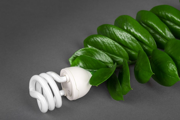 Lampada a led con foglia verde, concetto di energia eco, da vicino. lampadina su sfondo grigio. risparmio energetico e ambiente ecologico. copia spazio.