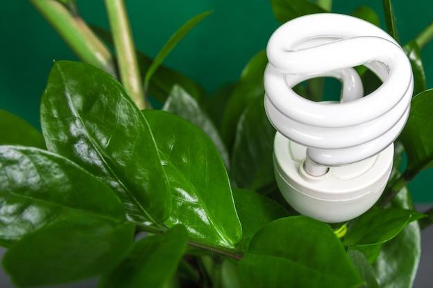 Lampada a led con foglia verde, concetto di energia eco, da vicino.