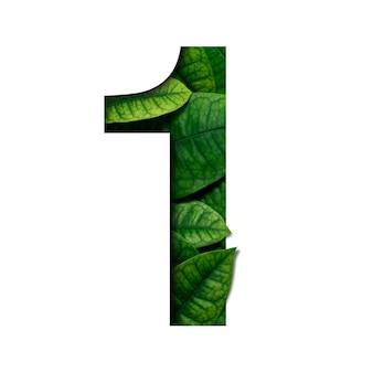 Lefas numero 1 in vera foglia viva con preziosa carta tagliata a forma di numero. carattere di foglie.
