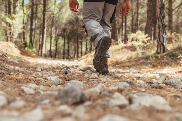 Vista della gamba dell'escursionista che cammina nella foresta