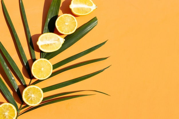 Limone su foglie di palma verdi su superficie arancione