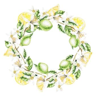 Limoni, fiori e foglie, corona dell'acquerello.frutti. illustrazione