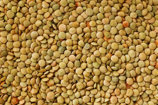 Lenticchie. sfondo di lenticchie modello di lenticchie verdi lenticchie biologiche naturali per alimenti sani Foto Premium