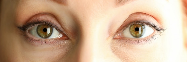 Vista della cassetta delle lettere degli occhi stupefacenti colorati verde arancio graziosi della femmina