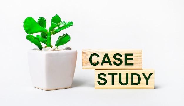 Su sfondo chiaro, una pianta in vaso e due blocchi di legno con la scritta case study
