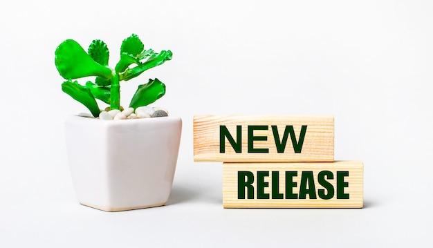 Su uno sfondo chiaro, una pianta in vaso e due blocchi di legno con la scritta new release