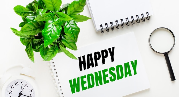 Su uno sfondo chiaro, c'è una sveglia bianca, una lente d'ingrandimento, una pianta verde e un quaderno con la scritta happy wednesday.