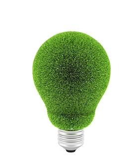 Lampadina con erba verde su bianco