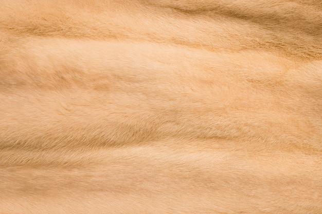 Sfondo di pelliccia di colore chiaro
