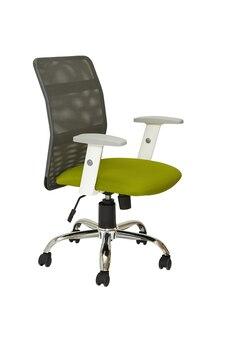 Poltrona da ufficio verde chiaro su ruote con retro in plastica grigia su sfondo bianco