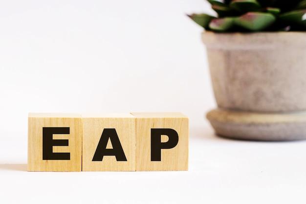 Su una superficie leggera, cubi di legno con la scritta eap employee assistance program e un fiore in un vaso