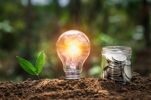 Lampadina con pianta che cresce e soldi in brocca di vetro sul suolo in natura